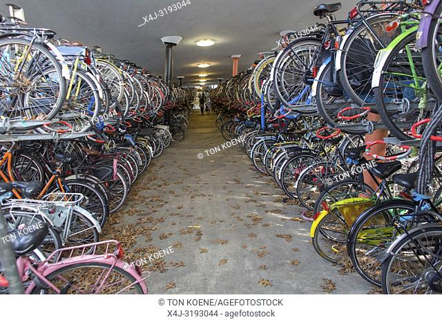 Bicycle parking in Groningen central train station