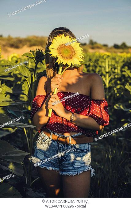 Young woman standing in a field holding a sunflower in front of her face