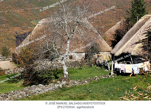 """View of a """"""""palloza"""""""", traditional dwelling in the mountains of the North of Spain, round and thatched roof. Piornedo village, Natural Park Ancares, Lugo, Spain"""