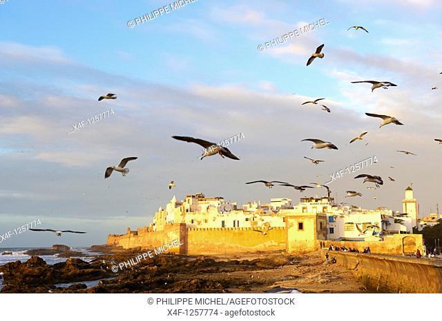 Morocco, Medina of Essaouira, Atlantic coast, Unesco world heritage