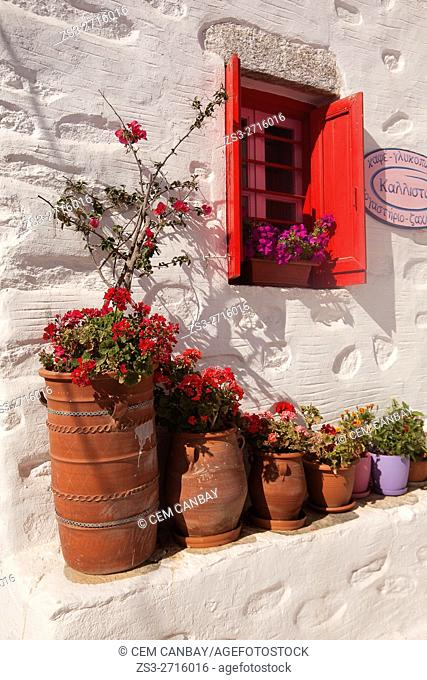 Geranium flowers at pots near a traditional Cyclades house, Amorgos, Cyclades Islands, Greek Islands, Greece, Europe