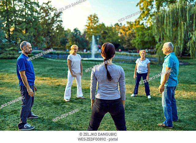 Group of people doing Tai chi in a park