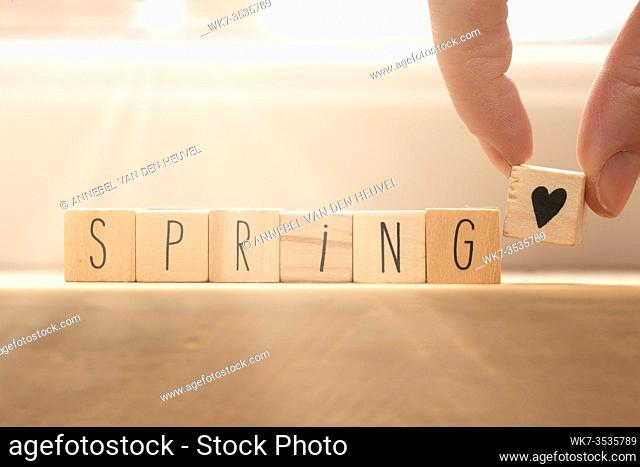 Wooden cubes with heart symbol and the word spring, social media concept spring background beauty