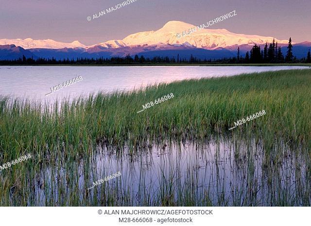 Mount Sanford 16, 237ft (4, 949m)  Wrangell-St. Elias National Park, Alaska, USA