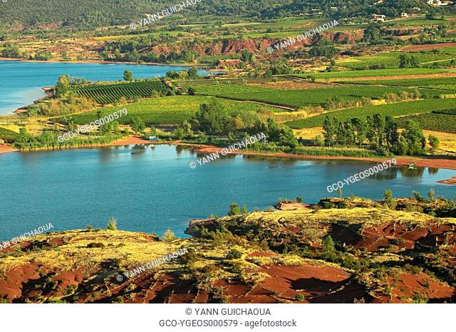 VINEYARDS - LAKE OF SALAGOU - HERAULT - LANGUEDOC-ROUSSILLON - FRANCE