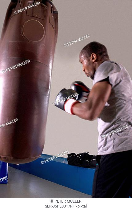 Boxer using punching bag in gym
