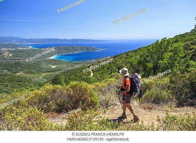 France, Corse-du Sud (2A), Prunelli region, Mare e Monti Sud hiking trail, between Porto Pollo and Coti-Chiavari, view over the GUlf of Valinco and Cupabia bay