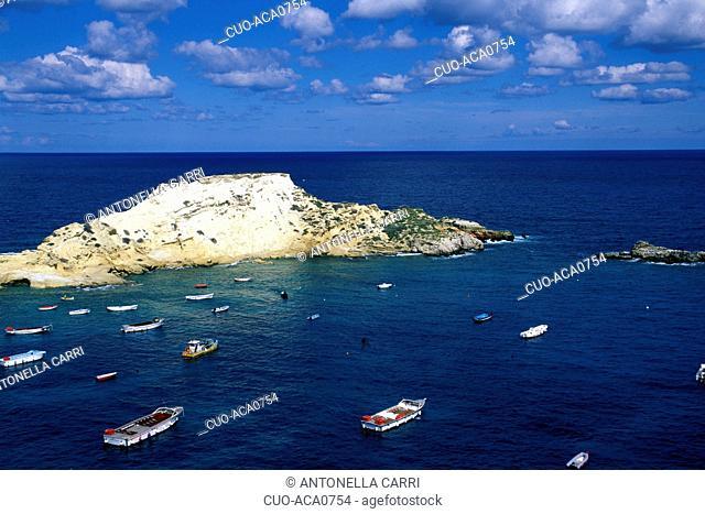 Tremiti island, Gargano national park, Foggia, Puglia, Italy