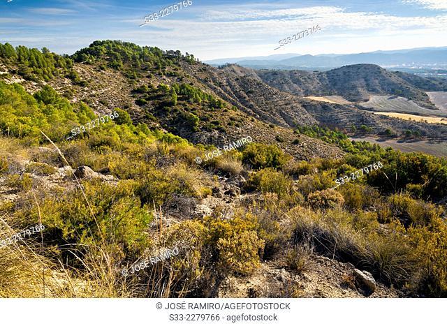 Rincon hills in La Alcarria. Guadalajara. Castilla la Mancha. Spain. Europe