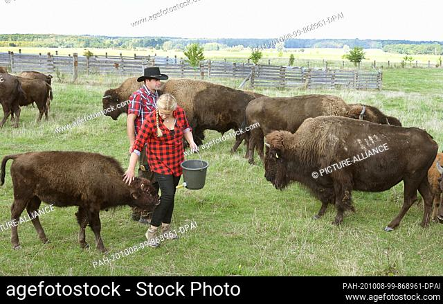 """01 October 2020, Saxony, Wermsdorf: Cora Lechner stands in her bison enclosure with her life companion Johannes Boos at the hand-raised calf """"""""Hannes"""""""""""