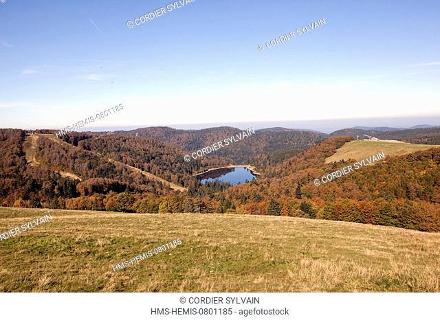 France, Haut Rhin, High Vosges Massif near Le Hohneck, Chaume du Bas Chitelet