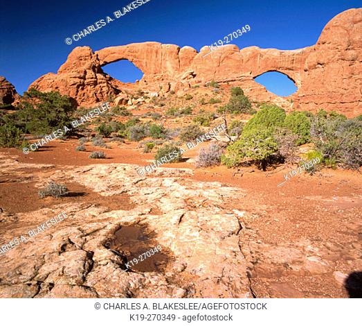 North and South Window Arches. Arches National Park. Utah. USA