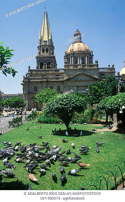 Cathedral. Guadalajara. It was began in 1551 and finished in 1618. Eclectic style with Gothic and doric elements. City icon. Mexico