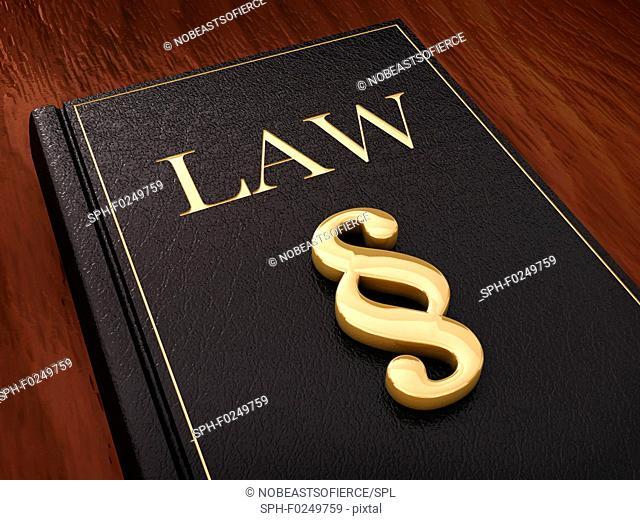 Judiciary, conceptual illustration