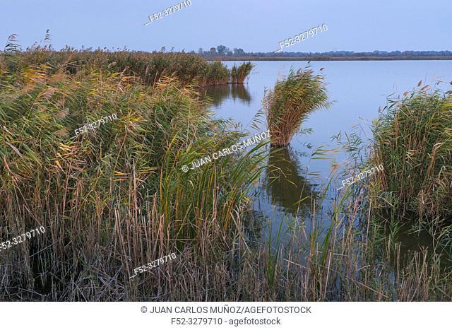 Danube Delta, UNESCO WORLD HERITAGE, Tulcea County, Romania, Europe