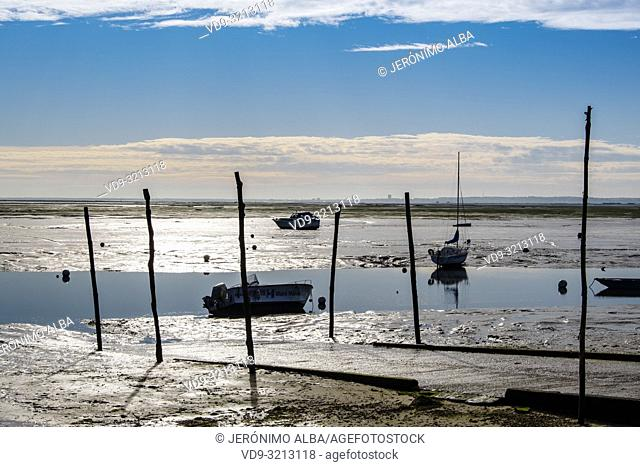 Beach. Oyster farming area, Arcachon Bay. Bassin d'Arcachon. Lège-Cap-Ferret, Gironde. Aquitaine region. France Europe