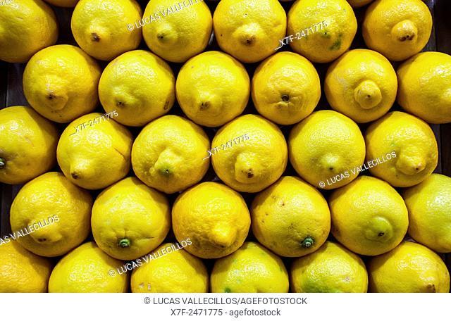 Lemon, in La Boqueria market, Barcelona. Catalonia, Spain