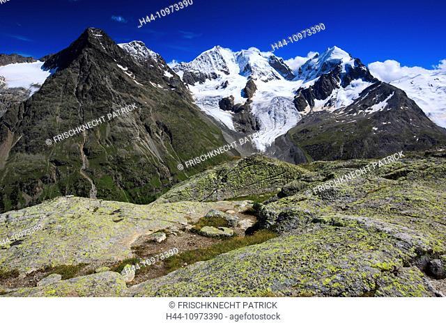 Alps, mountain, mountain panorama, mountain lake, mountains, mountain massif, mountain lake, Biancograt, flowers, Engadine, rock, cliff, Fuorcla Surlej