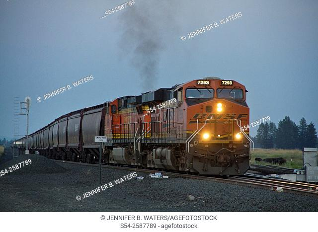 A BNSF train hauling grain near Cheney, eastern Washington State, USA just after sunset