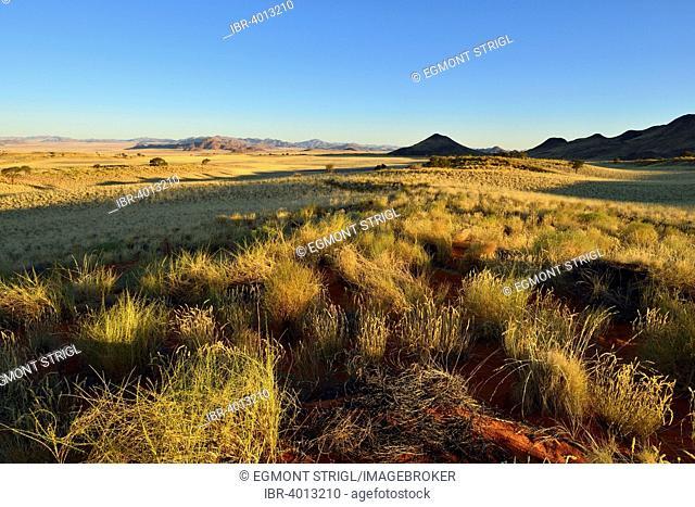 View over Namib Rand Nature Reserve, Namib Desert, Namibia