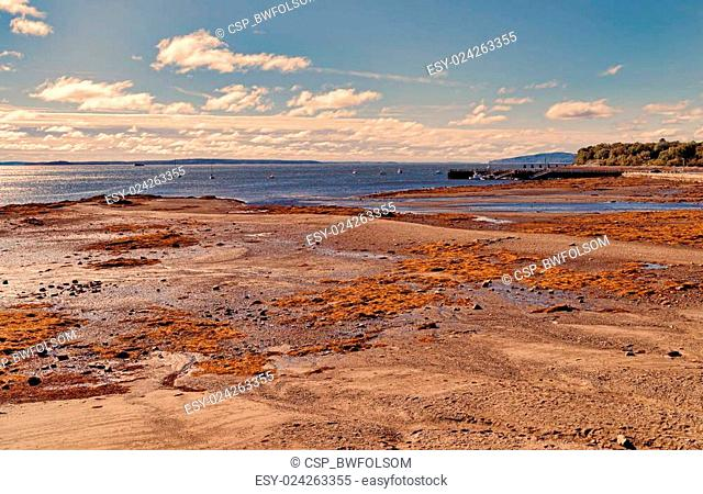 Low tide at Searsport Maine in early morning light