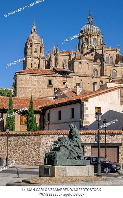 Salamanca, Catedrales from poet San Juan de la Cruz Memorial, Salamanca, UNESCO World Heritage, Castilla y Leon, Spain
