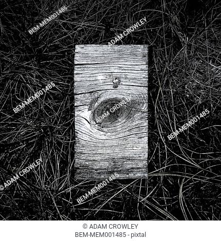 Close up of wood block in grass