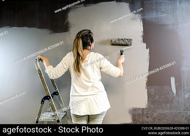 Woman climbed a ladder and catching a paint roller full of grey painting on a brown wall. Painter is upping and downing roller covering the wall with grey...
