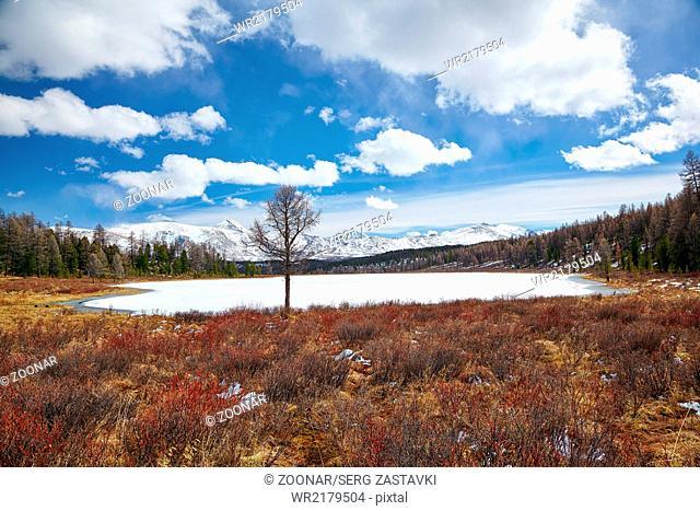 Altai Lake Kodelyukyol