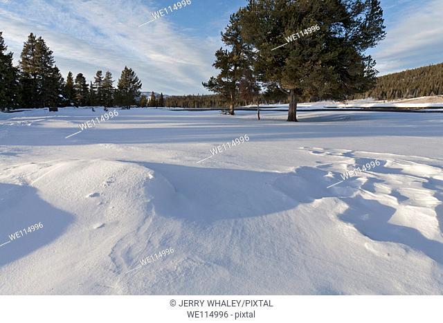 Old Faithful Area, Winter, Yellowstone NP, WY