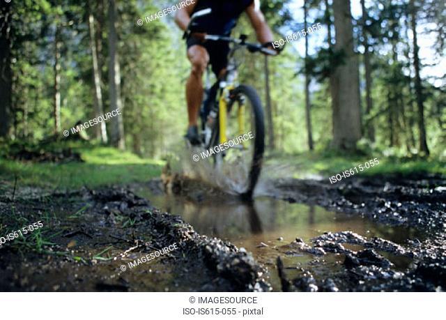 Cyclist on forest muddy path