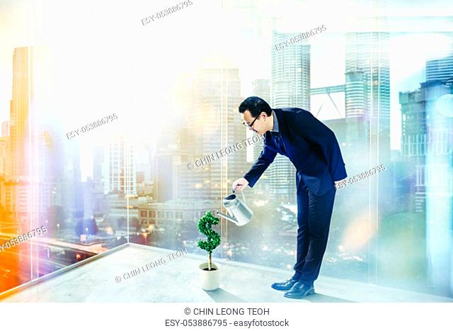 Business Man pouring water on dollar shaped tree . Business growth and entrepreneurship concept