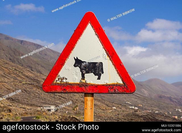 Spain, Canary Islands, El Hierro Island, east coast, cattle crossing sign