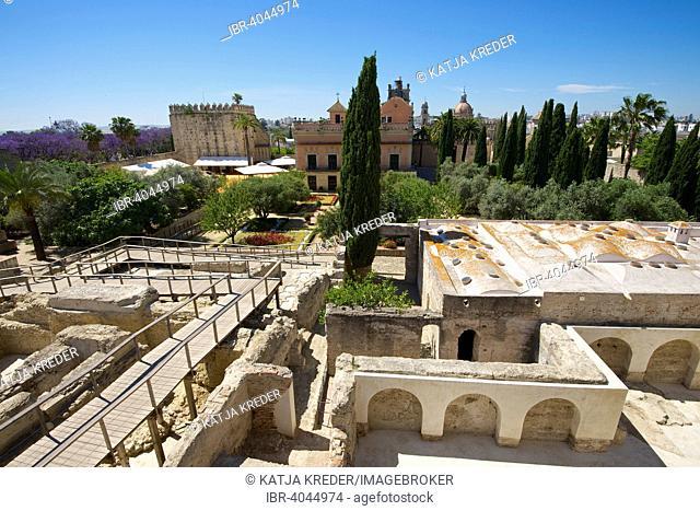 Gardens in the Alcazar de Jerez, Jerez de la Frontera, Andalusia, Spain