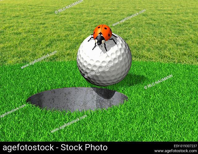 Golfball mit Marienkäfer