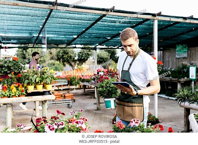 Worker in a garden center using a tablet