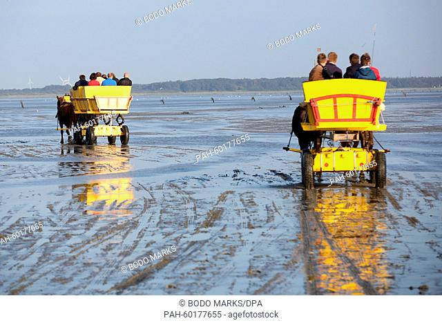 Mud flat trucks underway between North Sea island Neuwerk and Sahlenburg, Germany, 17 July 2015. Photo: Bodo Marks/dpa | usage worldwide