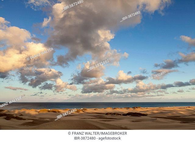 Dunes of Maspalomas, Gran Canaria, Canary Islands, Spain