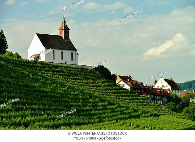 Rheinau catholic parish church above a vineyard  Switzerland
