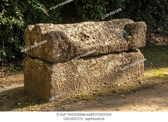 Sarcophagus, Alyscamps, sarcophagi alley, gallo roman period, Arles, 13, Provence, France