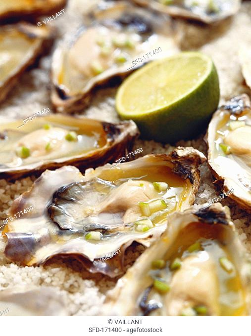 Oysters in apple jelly