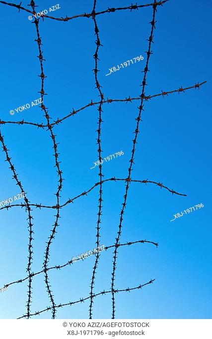 Alsace, Natzweiler Struthof camp, barbed, wire