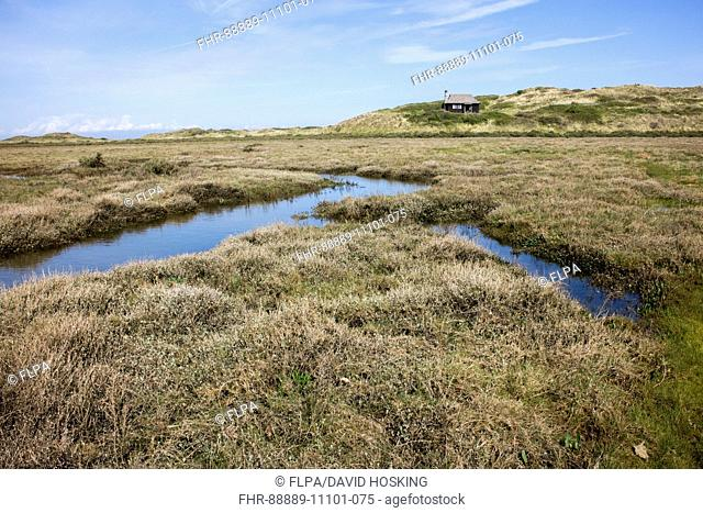 Looking over salt marsh to the Wardens cottage on Scolt Head Island Nature Reserve, North Norfolk. The Warden's Cottage was first used by Emma Turner in 1923