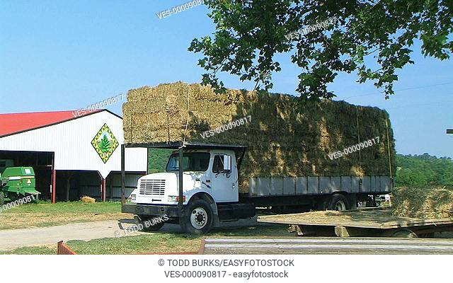 Truck hauling load of hay bales