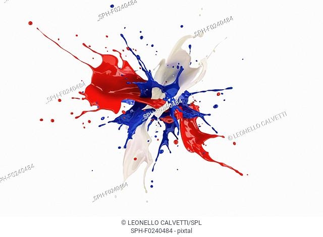 Red, white and blue paint splash explosion, splashing against one another. Isolated on white background
