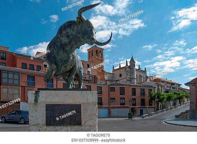 """"""""""""""""""""""" Toro de la Vega"""""""" Tordesillas Valladolid"""