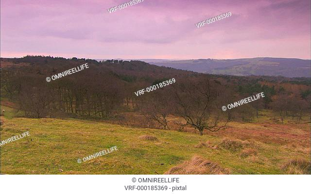 trees and countryside of the Peak District
