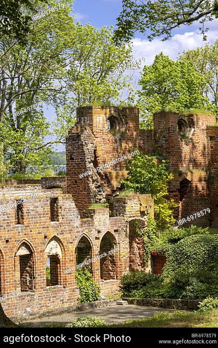 Ruins of Arendsee Monastery, former Benedictine nunnery, Altmark, Saxony-Anhalt, Germany, Europe