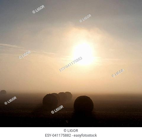 dawn on the field with bales of wheat straw, very dense foggy morning - landscape. dark and light colors on the photo, monochrome