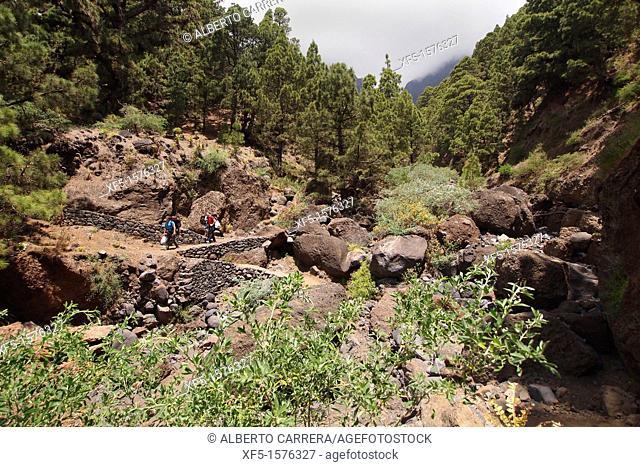 Excursionist on footpath, Barranco de Risco Liso, Caldera de Taburiente National Park, Biosphere Reserve, ZEPA, LIC, La Palma, Canary Islands, Spain, Europe